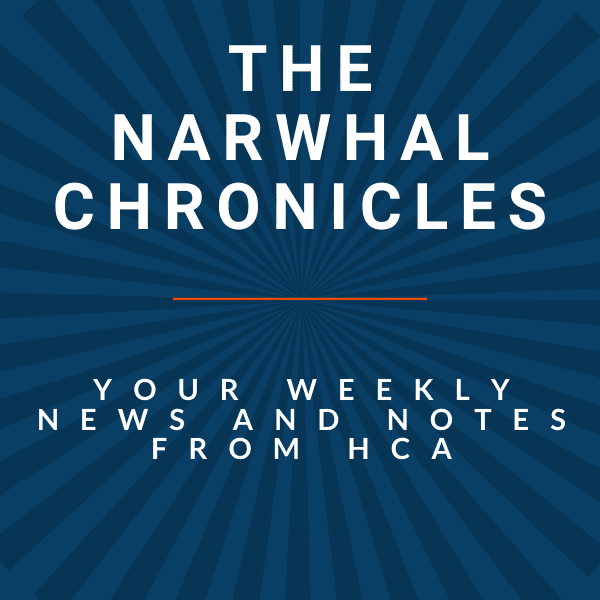 Narwhal Chronicles – April 16, 2021